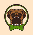 dog head mascot character in bow tie vector image vector image