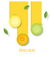 fresh melon fruit background in paper art style vector image
