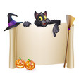 halloween scroll with cat vector image vector image