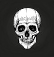 hand sketched death scary human skull vector image vector image