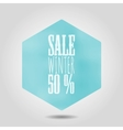 spring sale icon in hexagonal shape vector image