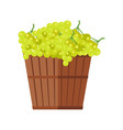 wooden basket with grapes white wine vector image vector image