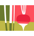 abstract vegetable design of radish vector image vector image