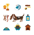 basset hound dog infografic with dog care isolated vector image vector image