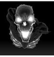 Black skeleton in the dark vector image