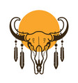bull skull with feathers wild west vector image vector image