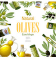 cartoon premium natural olive template vector image vector image