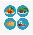 healthy food related icons image vector image