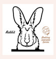 peeking rabbit - funny rabbit out - face vector image vector image