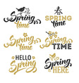 Spring overlays vector image