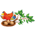 A colourful bird at the branch of a tree with a vector image vector image