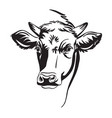 abstract portrait bull in vector image