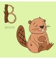 Alphabet letter B beaver children vector image vector image