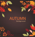 autumn leaves stylized background autumn seasonal vector image