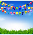 bunting birthday flags with sky and grass border vector image vector image