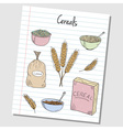 cereals doodles lined paper colored vector image vector image