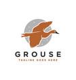 modern grouse bird logo vector image