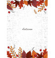 outline flat autumn leaves and mushrooms vector image