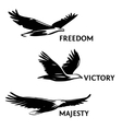 Set of eagles painted with a brush Silhouettes vector image