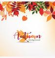 autumn leaves stylized background autumn seasonal vector image vector image