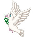 cartoon dove birds logo for peace concept vector image