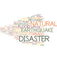 disaster word cloud concept vector image vector image
