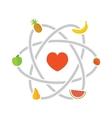 Fruits scheme vector image vector image