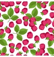 Seamless nature pattern with raspberries vector image