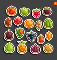 set icons fruits and berries vector image vector image