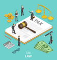 tax law flat isometric concept vector image