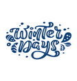 winter days blue christmas vintage calligraphy vector image