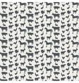 background farm animals vector image
