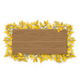 empty wooden sign with yellow autumn tree branch vector image vector image