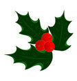 holly leaves berries icon vector image