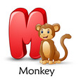 letter m is for monkey cartoon alphabet vector image vector image