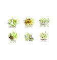 medical cannabis logo design original set ganja vector image