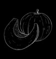 pumpkin hand drawn sketch on black background vector image vector image
