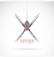 spider design on white background insect animal vector image vector image