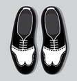 Tango shoes2 resize vector image