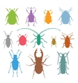 Colorful insects biology collection vector image