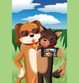 dogs taking a selfie vector image