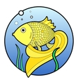 Gold fish with bubbles in water vector image vector image