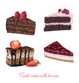 hand drawn delicious cake slices vector image