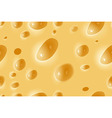 seamless background cheese vector image