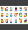 toy kids animals in clothes characters set cute vector image