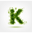 Green eco letter K for your design vector image vector image