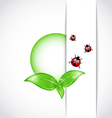 Green Leaves Ladybugs Background vector image