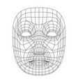 isolated on white human face mesh 3d modeling vector image vector image