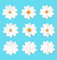 lovely white paper flower set vector image vector image