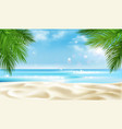 sea beach with palm tree leaves background summer vector image